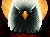 Bald Eagle eagle bird illustration painting digital painting