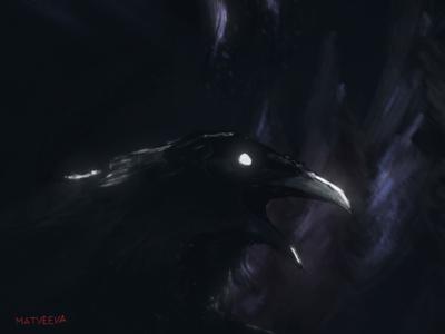 Raven in darkness | Concept Art