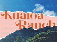 🦕🦕🦕🦕 Kualoa Ranch  🦖🦖🦖🦖