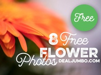 8 Free Flower Photos