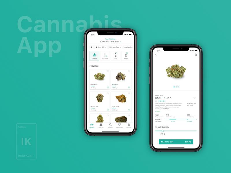Cannabis App Concept
