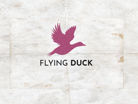 Flying duck logo design