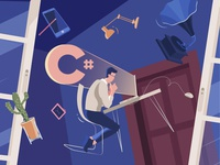 What is a C# Developer?