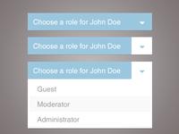 Dropdown role selection