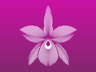 Orchid2 tropical logo botanical mark line art nature flower orchid