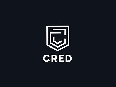 CRED 2.0 | ParticleFiber Splash Screen splash screen visualdesign vector flat animation palette design logo ui color