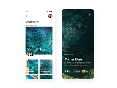 Nasa Trip Interface continue to work hard app typography ue card ux interface colors china art ui design
