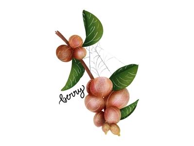 inktober day10: berry leaves spider web spider illustration texture procreate gradient inktober challenge berry