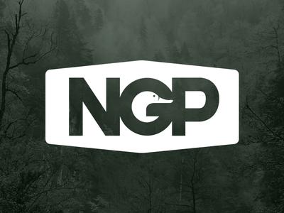 NGP logo art direction memphis duck icon branding logo