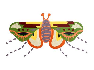 Eye Fly