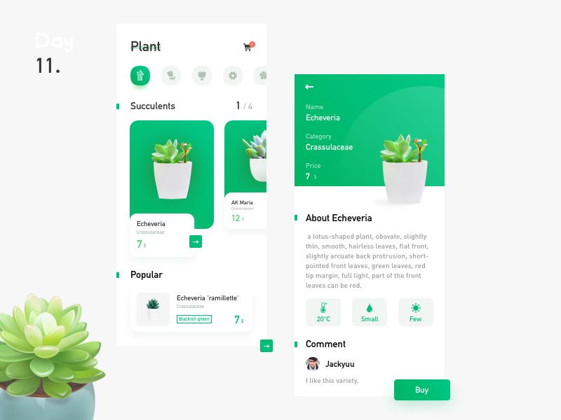 Plant selection succulent plants green plant shopper shopping app interface design card app ui icon