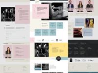 UDL Website