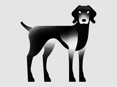 Black Vizsla lenny vizsla bw illustration dog white black