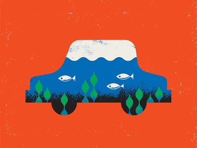 Water Damage insurance damage fish water car root