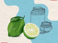 Lemon Pickle Cover