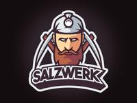 Salzwerk Logo