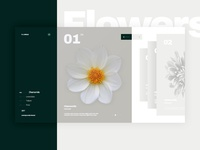 Herbarium Concept