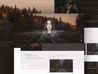 Landscape Ecologist website