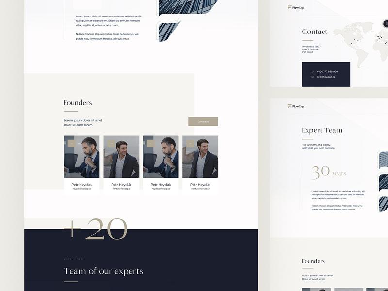 FlowCap - Financial Website luxury design financial web webdesign ux ui