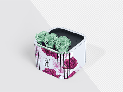Flower Boxes - Package Design flower flower box corporate identity roses package mock-up design box template template showcase realistic mockup branding box