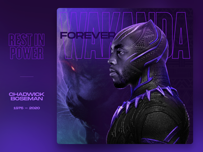 Rest in Power Chadwick Boseman king of wakanda rest in peace rest in power wakanda marvel black panther chadwick boseman