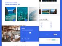 Travel Agency Website Concept