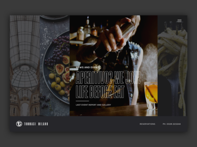 Tommasi Webiste - Concept 2