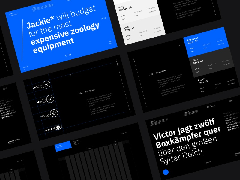 Brand Guidelines - Project X illustrator identity ui ux minimal clean flat brand guidelines ui ux charachter design brand web design type web design icon branding website typography lettering