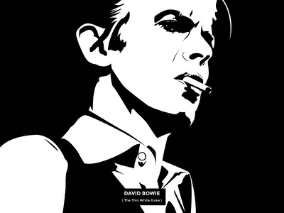 David Bowie { The Thin White Duke } illustration drawing david bowie black  white