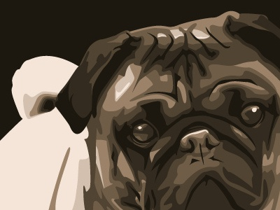 Pug Vector Illustration illustration vector