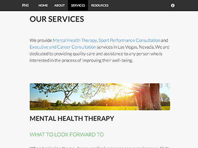 Person-Holistic Innovations html css web