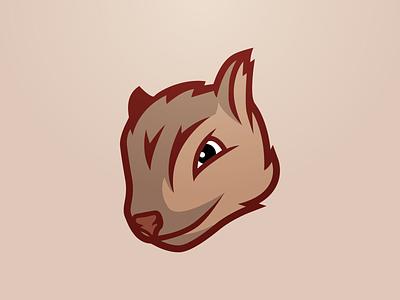 Squirrels Mascot cartoon brand maroon animal mascot squirrel
