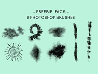 FREEBIE PACK 8 Photoshop Brushes + More!