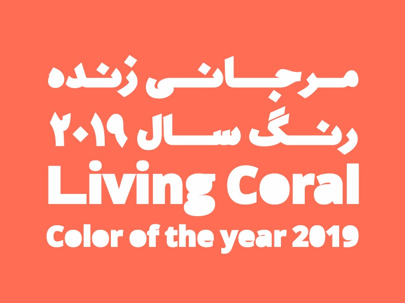 Color of the year 2019 by shahab siavash dribbble dribbble - 2019 color of the year ...