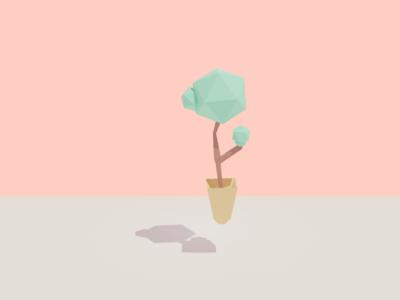 Lil Plant