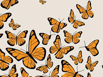 Monarch Butterflies butterfly