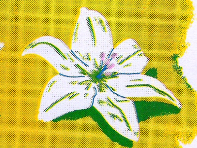 Lily cmyk halftones flower lily riso risograph