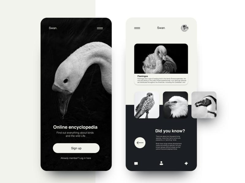 Online encyclopedia app