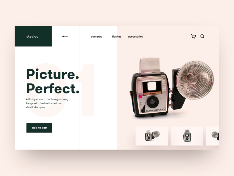 Retro series 1 of 10 grid pink salmon landing web design camera product design app concept product hero ux clean ui ui minimal