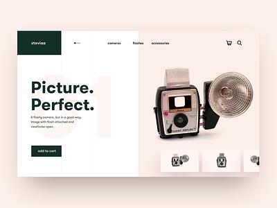 Retro series in the modern era grid pink salmon landing web design camera product design app concept product hero ux clean ui ui minimal