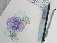 Succulent Crest in Watercolor