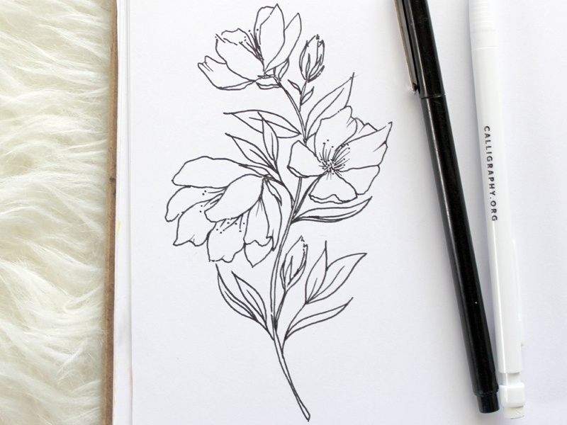 Floral Sketches concept invitations drawing outline sketch floral
