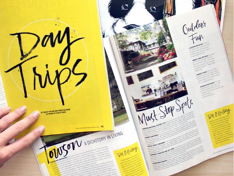 Northern Virginia Magazine Lettering brush lettering hand lettering type typography lettering