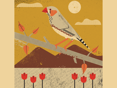 Zebra Finch texture distressed screen printing finch bird vectorart vintage retro artist design illustrator graphicdesign digitalart digitaldesign vector illustration
