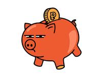 Very suspicious pig