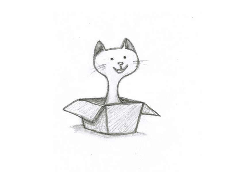 Box cat pencil drawing pencil drawing cat in box box cat