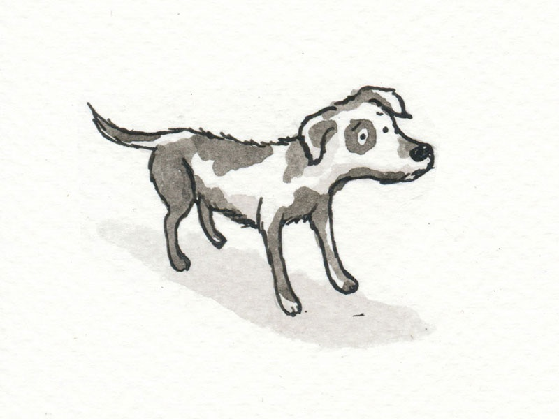 Sad stray dog by John Rowley | Dribbble | Dribbble
