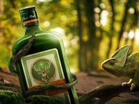 """Jagermeister """"Deep in the forest"""""""