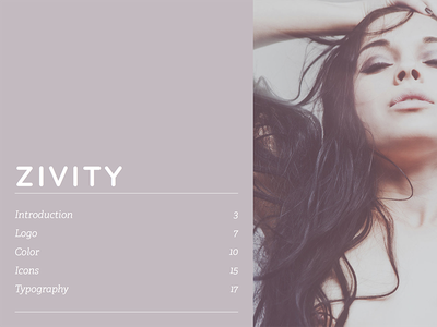 Zivity Style Guide TOC style guide branding table of contents identity