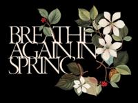 Breathe again, in spring
